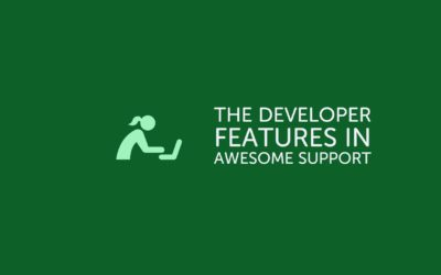The Developer Features in Awesome Support